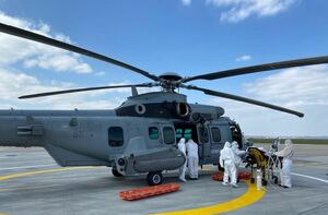 helicoptere puma bois