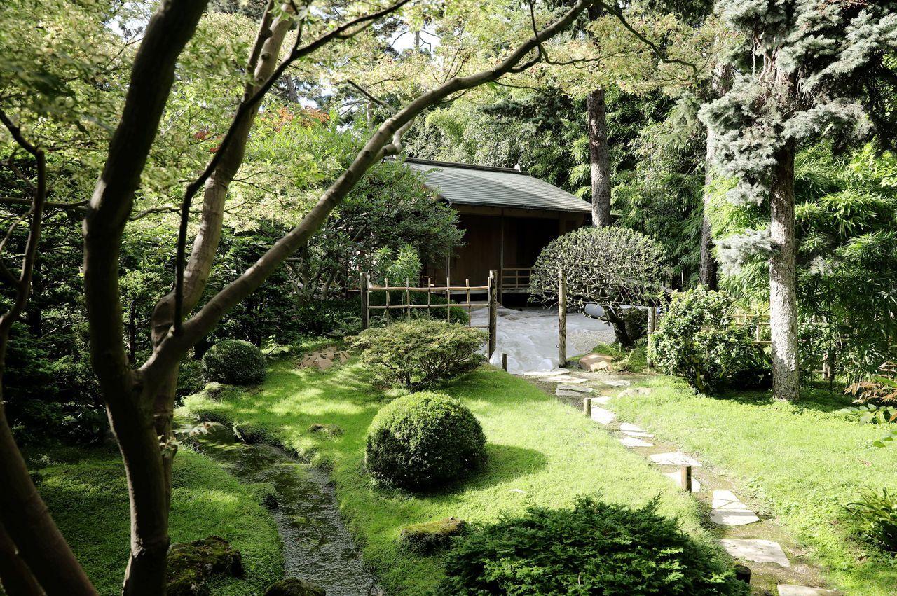 Visite Zen Au Cœur Du Plus Grand Jardin Japonais D Europe Le Parisien