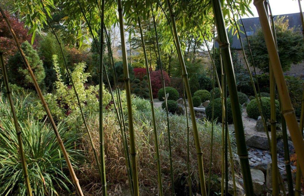 Ce Week End Prenez Le Chemin Des Jardins Le Parisien