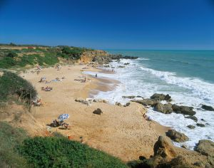 Muscler females kin perez porno
